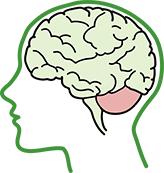 ataxia que afecta al cerebro